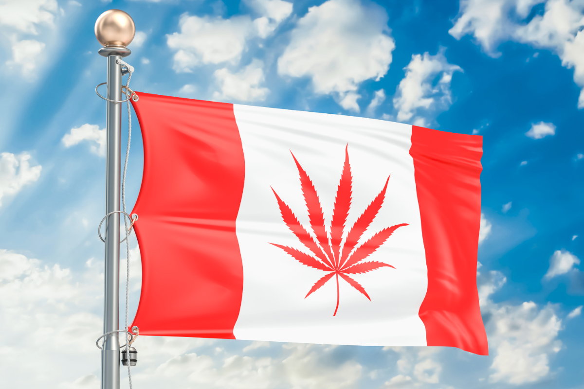 Canadian Cannabis Dispensaries