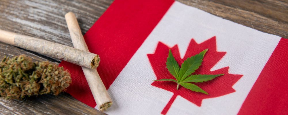 Taking a look at the Canadian Cannabis Dispensaries