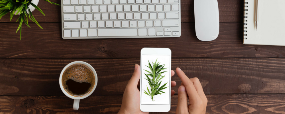 Marketing & Advertising for your Marijuana Business done the Right Way
