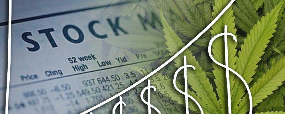 Important Reasons to Buy Marijuana Stocks Right Now