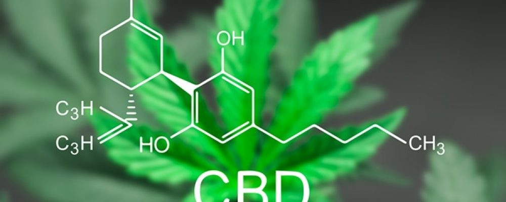 CBD Oil – How Long Does It Stay In Your Body?